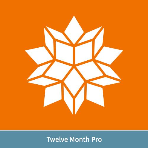 Wolfram Alpha Pro (12-Mo Rental)