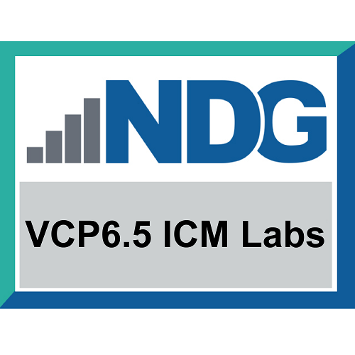 VMware vSphere Install Configure and Manage 6.5 Labs (6-Months Access)