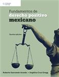 Fundamentos de derecho positivo mexicano, 5th Edition - Imagen del producto pequeña