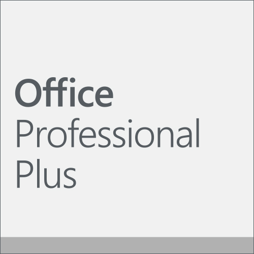 Office Professional Plus 2019 (English) (Work At Home)