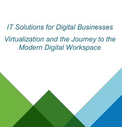 IT Solutions for Digital Businesses - eText (English)