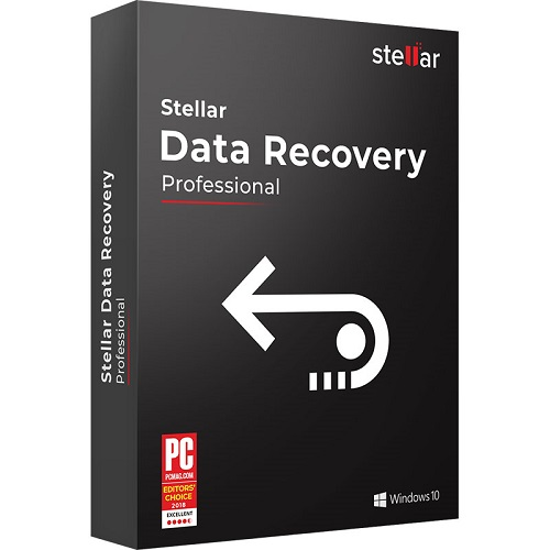 Stellar Data Recovery Professional - 1 Year License for Windows