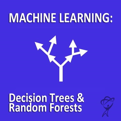 Machine Learning: Decision Trees & Random Forests (12-Month Subscription)