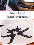 Flat World Knowledge - Principles of Social Psychology - Small product image